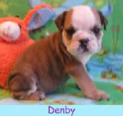 m-denby1213.jpg